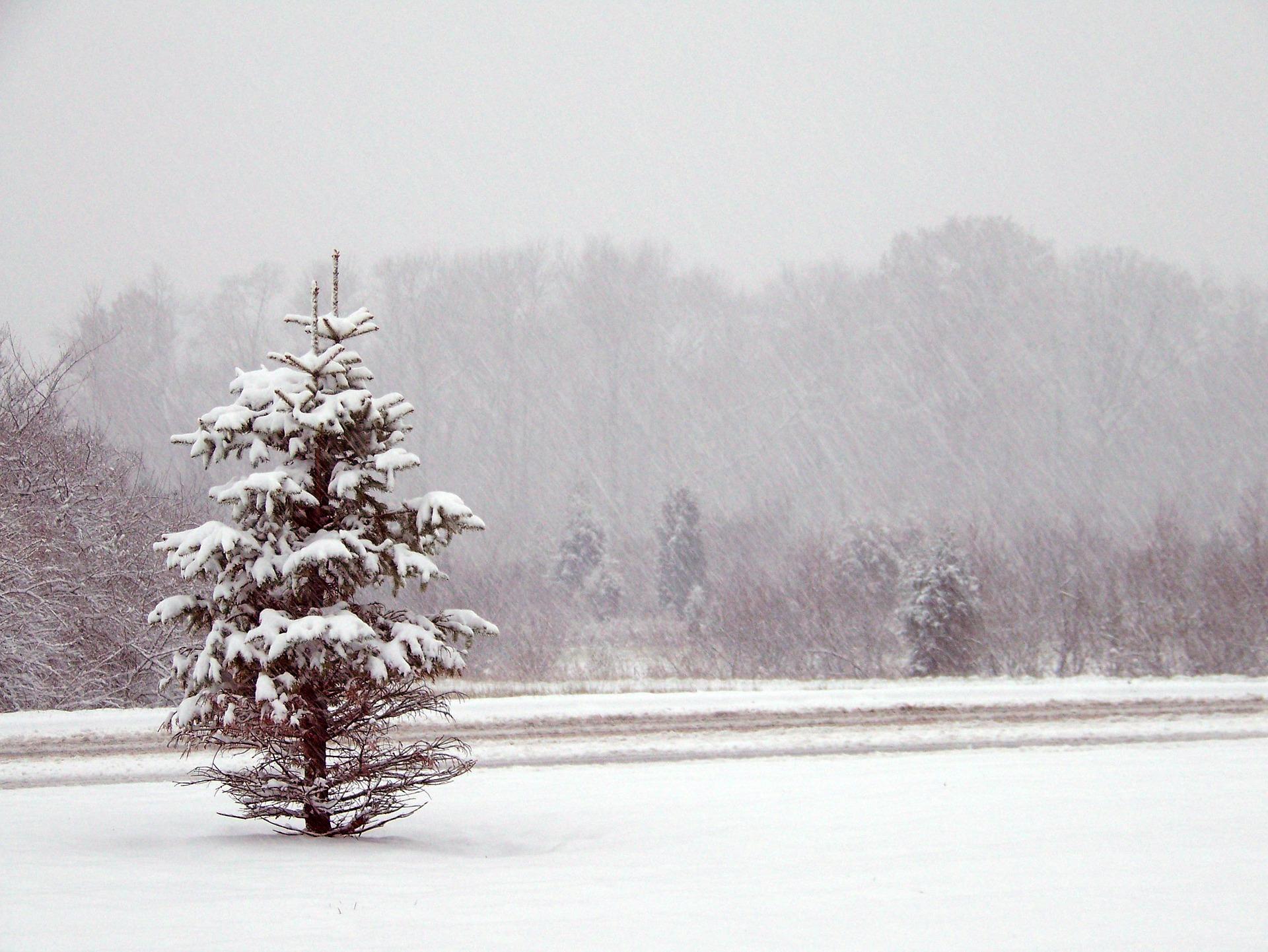Komunikat 16/2020 – opady śniegu