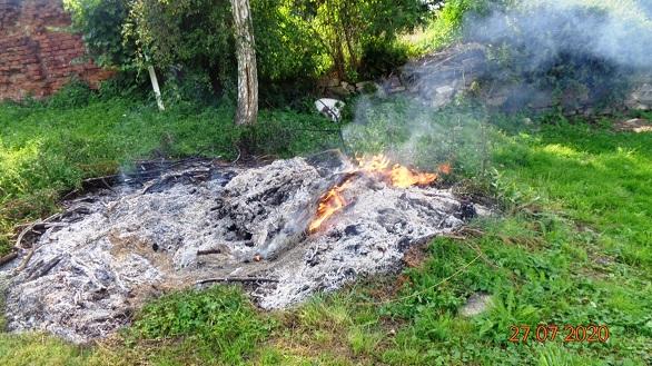 Spalał odpady roślinne