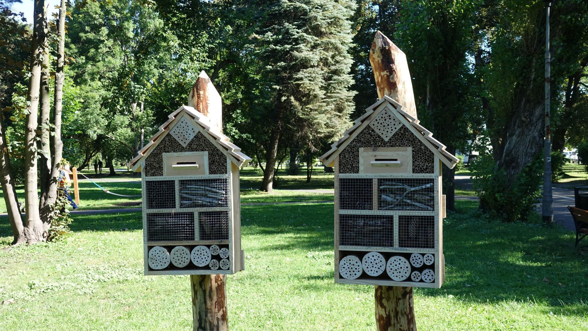 Eko domki dla owadów stanęły w Nysie