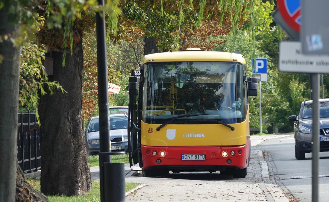 Miejski przewoźnik przywraca połączenia