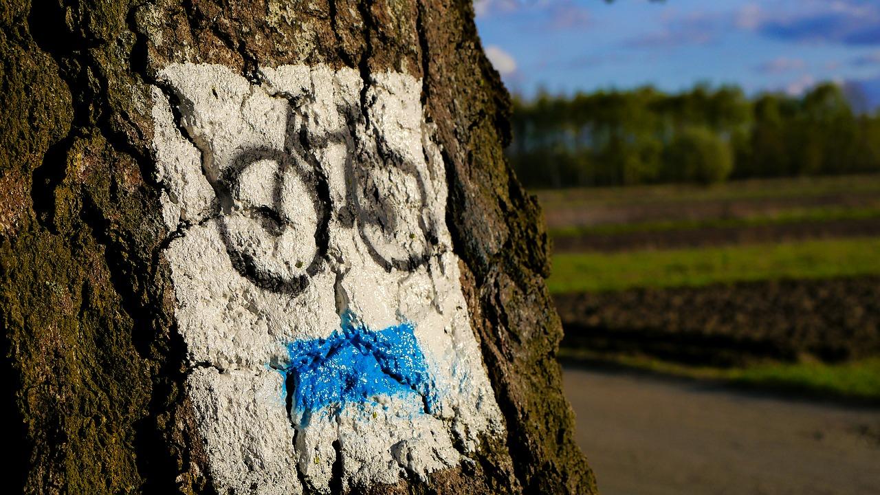 Rajd rowerowy Nysa-Otmuchów-Nysa
