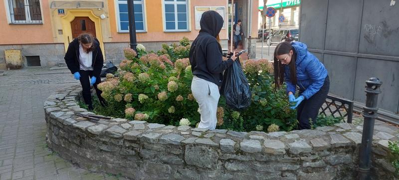 Młodzież pielęgnuje zieleń